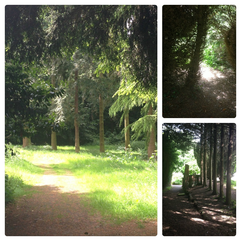 Nonsuch Park 2