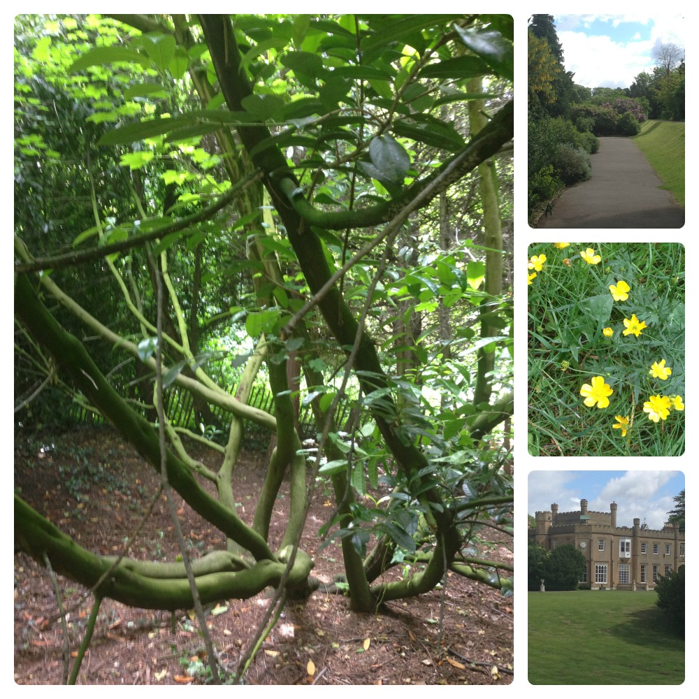 Nonsuch Park 3