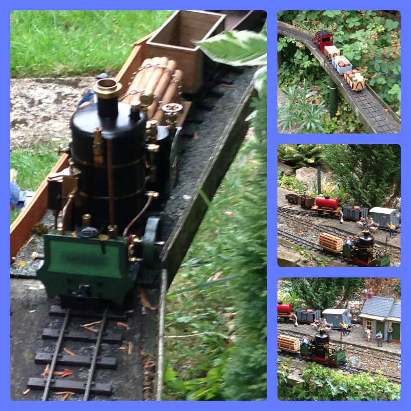 train garden 3