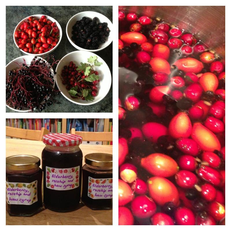 berry walk 6