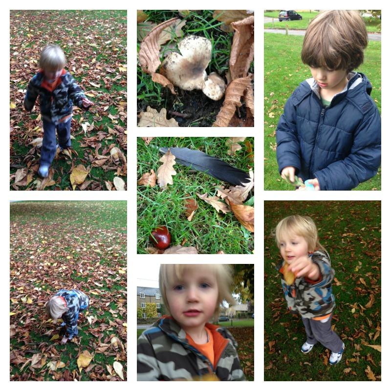 leaf hunt 3