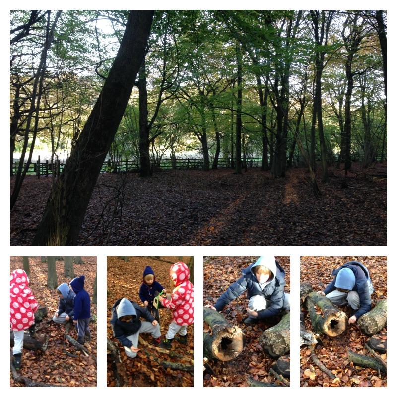 gruffalo woods 3
