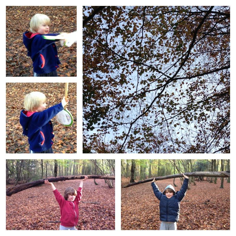 gruffalo woods 4