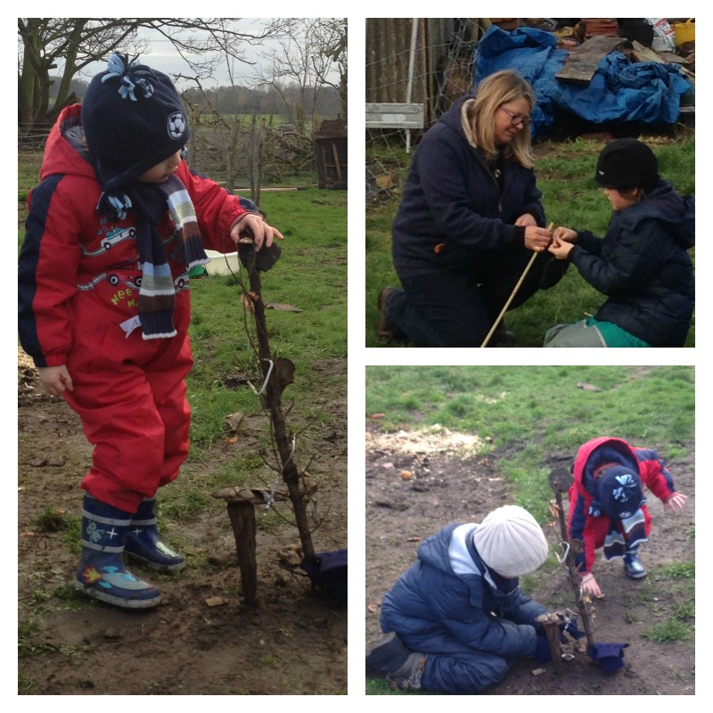 forest school eleven