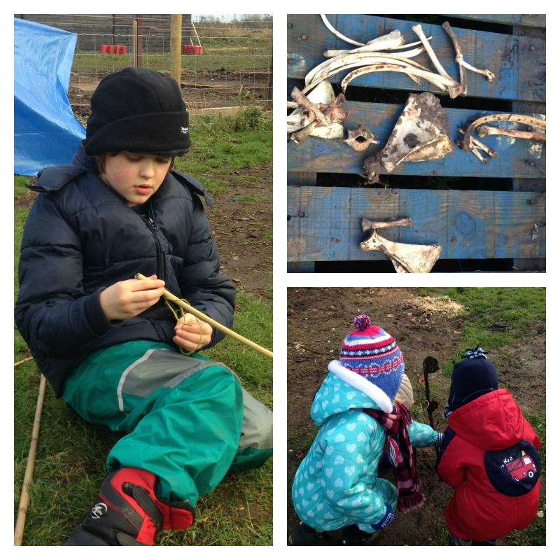 forest school six
